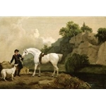 A Grey Hunter with a Groom and a Greyhound at Creswell Crags circa 1762-4 , George Stubbs (1724-1806)