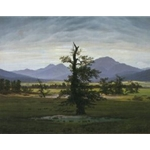 Solitary Tree , 1821; Caspar David Friedrich