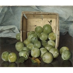 S Joseph Decker Green Plums