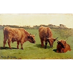Study of Three Cows