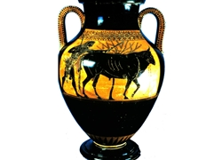 Belly Amphora Herakles Drives a Bull to Sacrifice